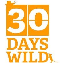 30 Days Wild