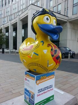 aqua ducked 2015 a