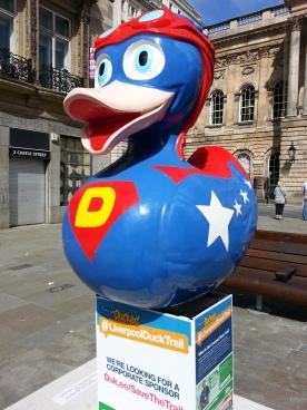 aqua ducked 2015 b