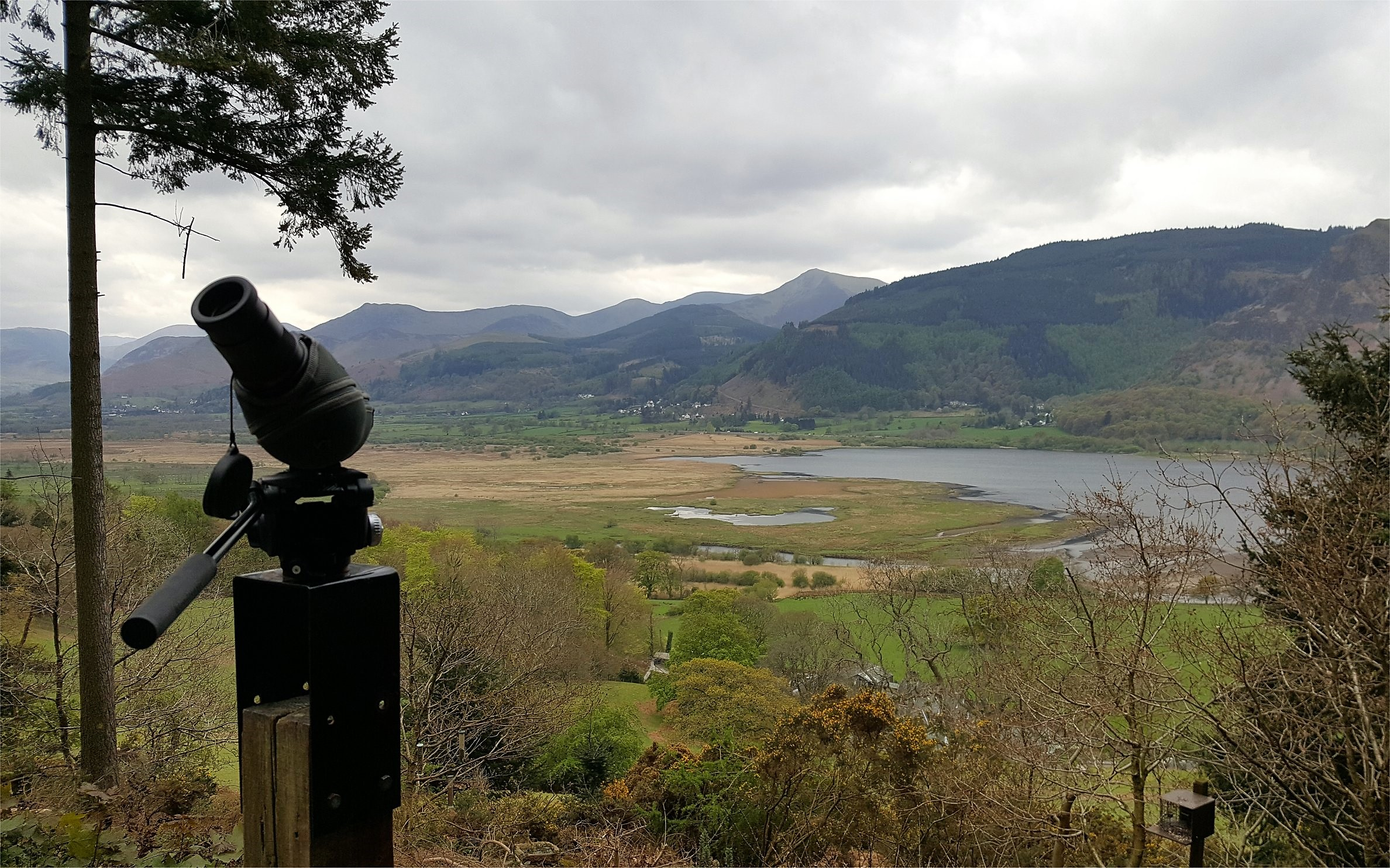 Osprey Viewpoint