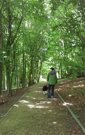 Riley and David in woodland walk