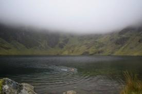 Swimming in Llyn Cau