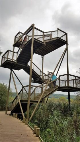skytower (2)