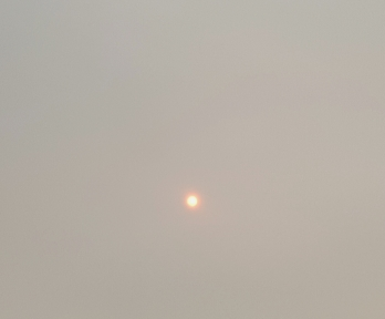 Saharan Sun - Ophelia