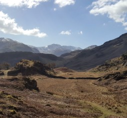 Towards the Scafells