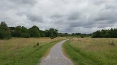 Mab Lane Community Woodland