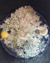 Elderflower Concoction