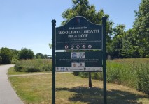 Woolfall Heath Meadow