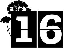 twt-30-days-wild_countdown_16