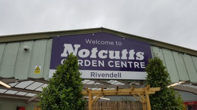 11am to 12 noon - Visiting a garden centre