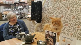 Liverpool Cat Cafe