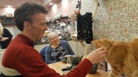 Liverpool Cat Cafe