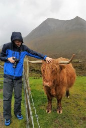 David and Highland Cow