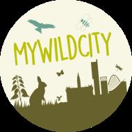 My Wild City