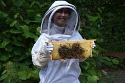 Christine and hive frame