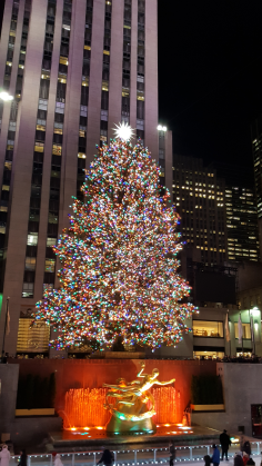 The Rockefeller Christmas Tree