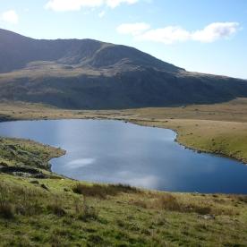 Llyn Ffynnon-y-gwas (Google Image)