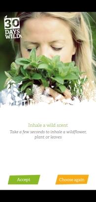 inhale a wild scent