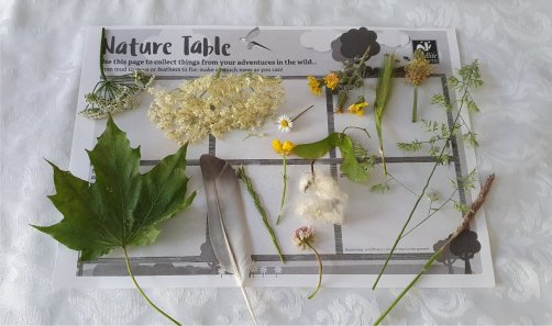 nature table1