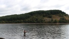 loch drunkie swim
