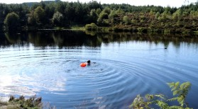 Lochan Reòidhte swim